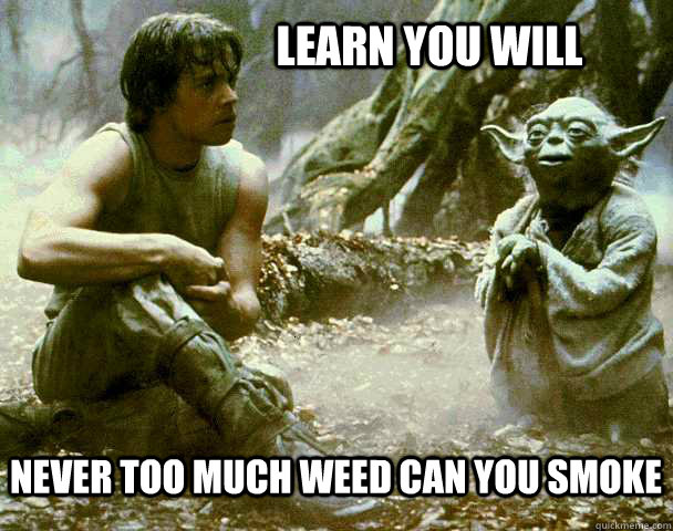 Yoda Learn Luke Too much weed meme