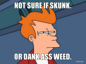 not-sure-if-skunk-or-dank-ass-weed